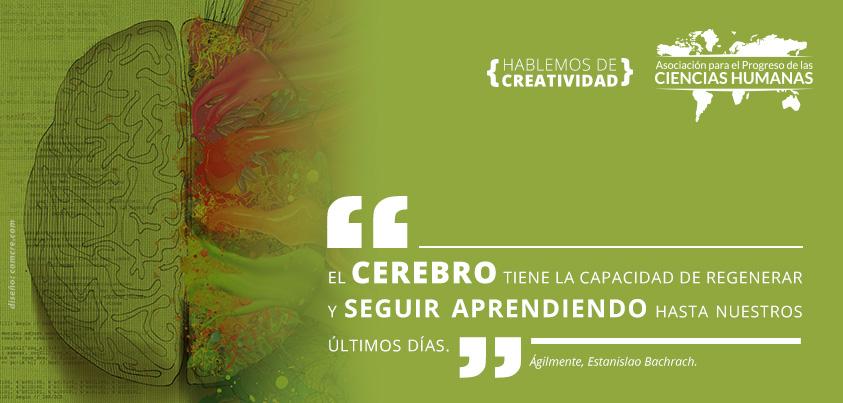 05_creatividad